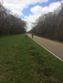 Natchez Trace Parkway, March 2015, near Port Gibson MS