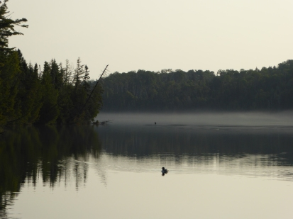 McCargo Cove-Loon at Dawn