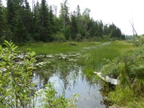 Estuary at Chicken Bone Lake, Isle Royale